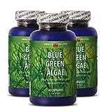 Klamath Blue Algae - Blue Green Algae - Enhance
