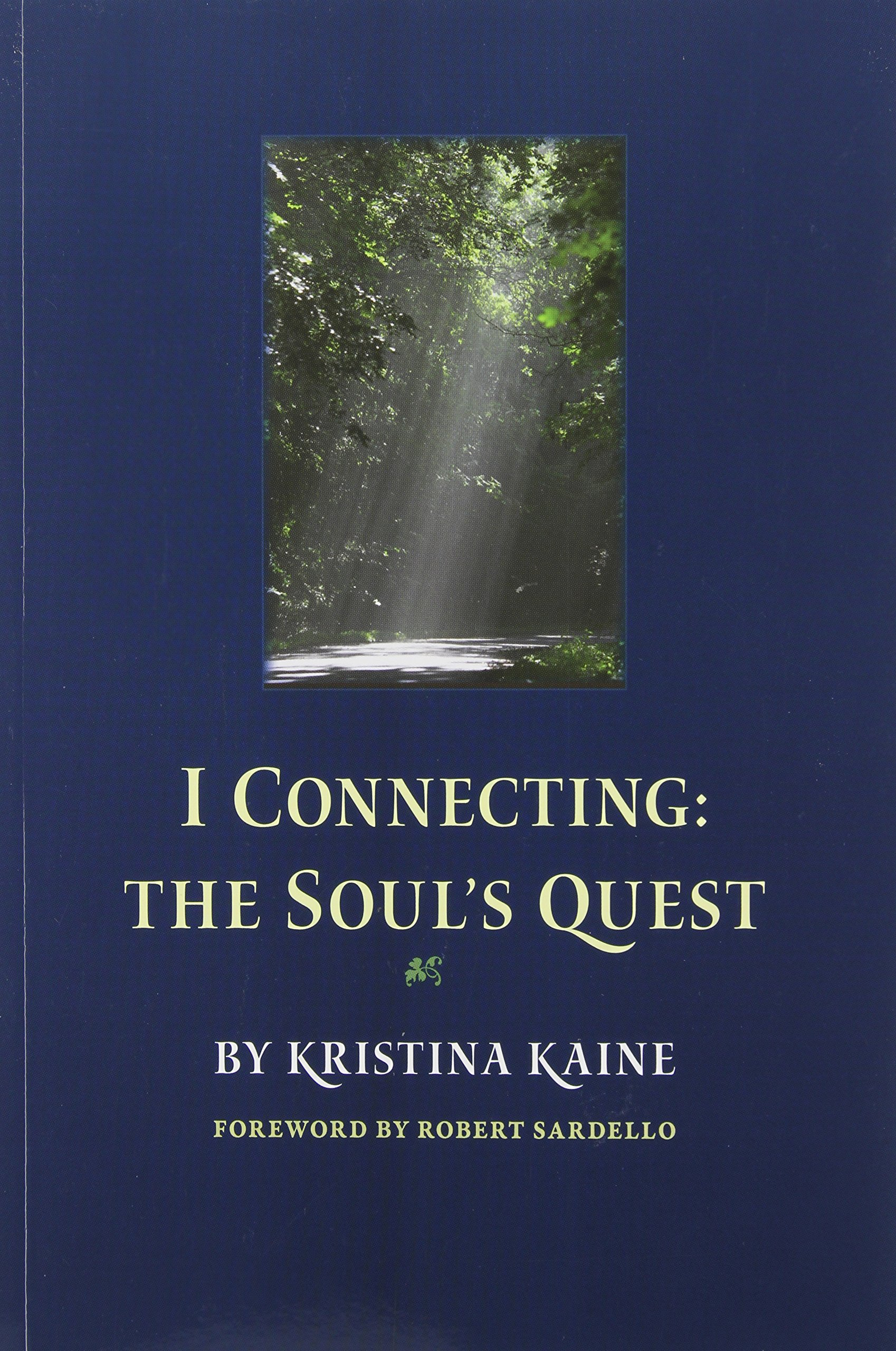 Download I Connecting: The Soul's Quest pdf