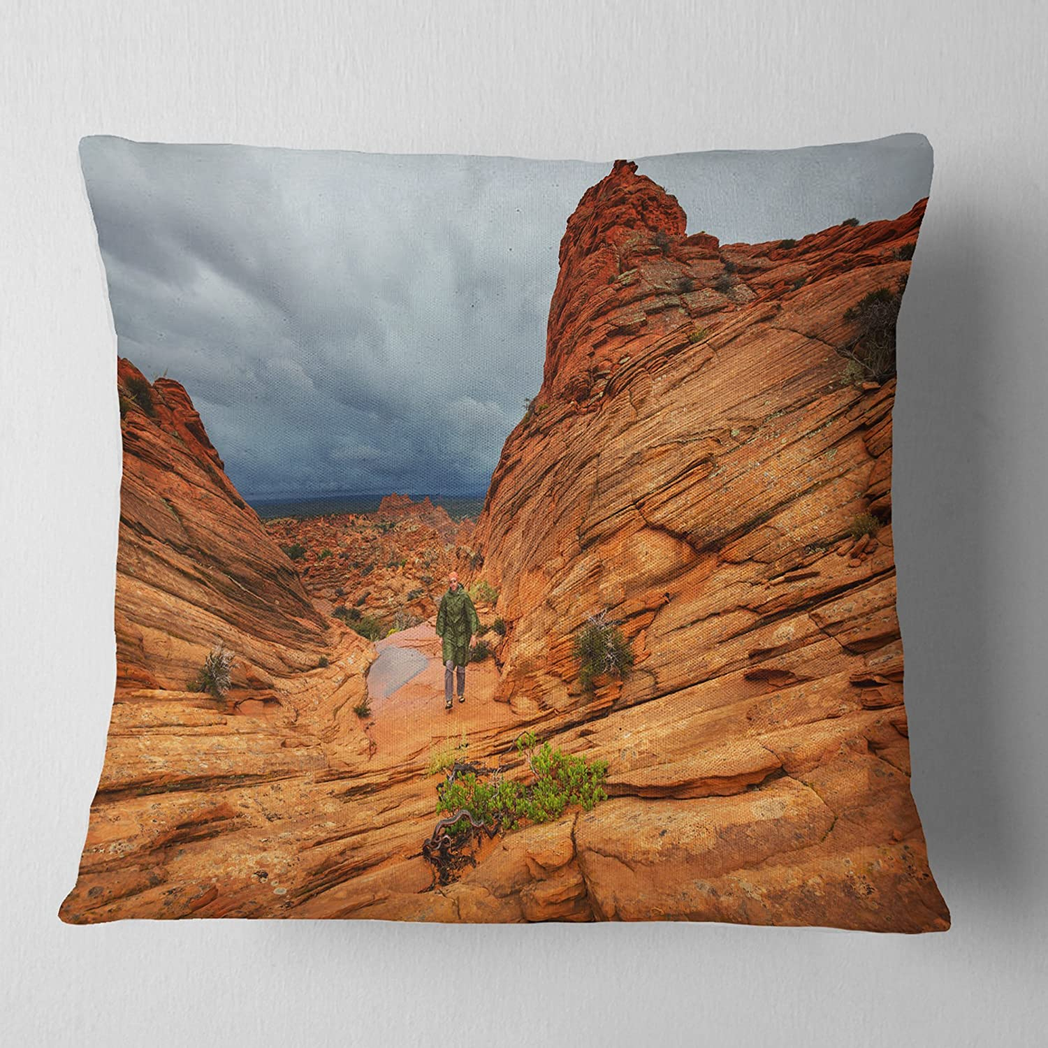Designart Vermillion Cliffs Wilderness Landscape Printed Throw Cushion Pillow Cover For Living Room Sofa 18 In X 18 In Arts Crafts Sewing