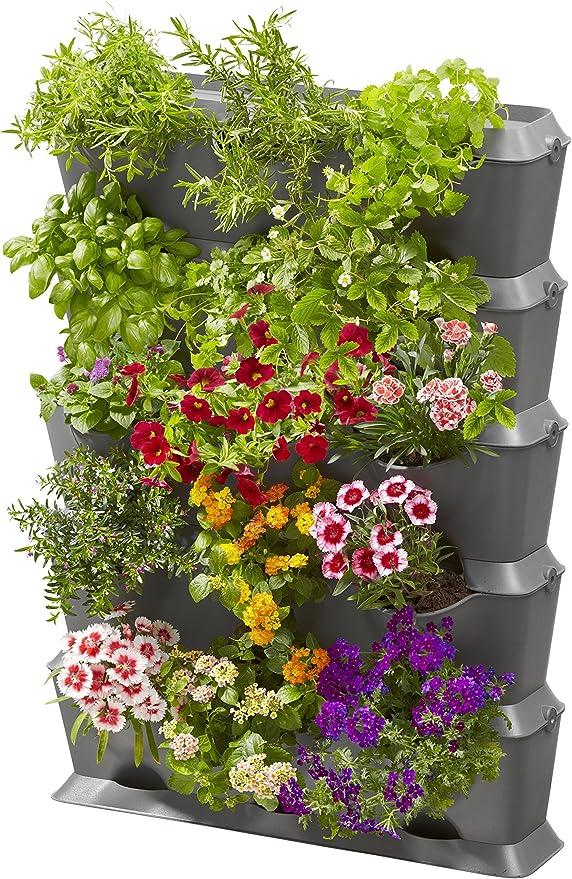 Wie man mit natürlichen Pflanzen schnell Gewicht verliert