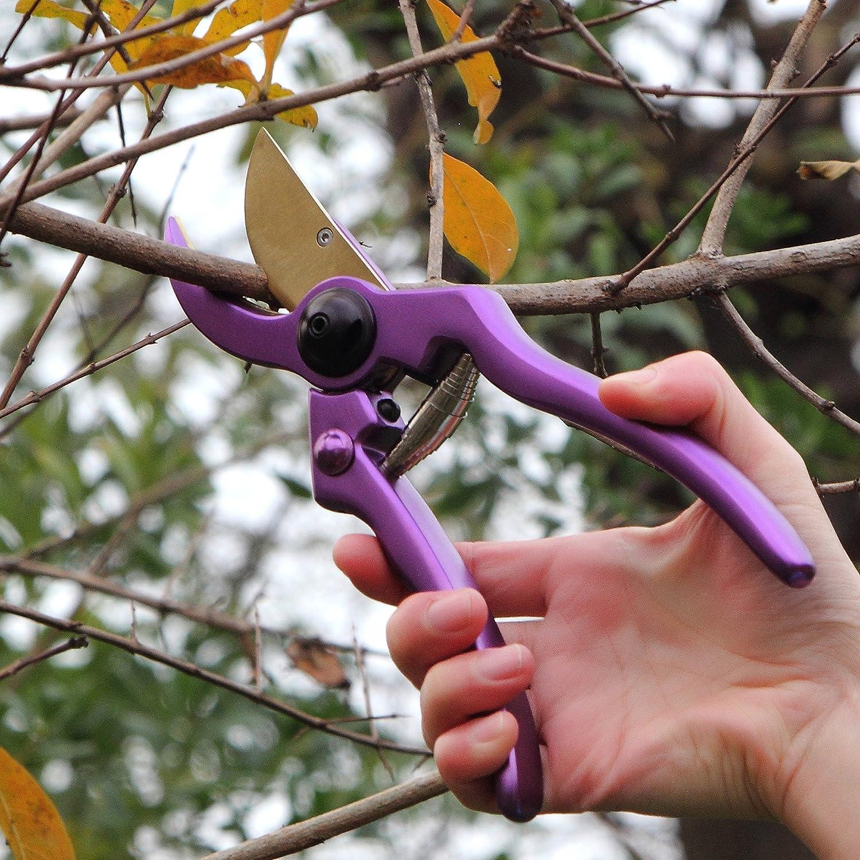 mano tijeras de podar con sistema de cierre de seguridad /perfecto de /árbol Trimmer Tijeras de jard/ín, color morado Profesi/ón aluminio jard/ín tijeras de podar/