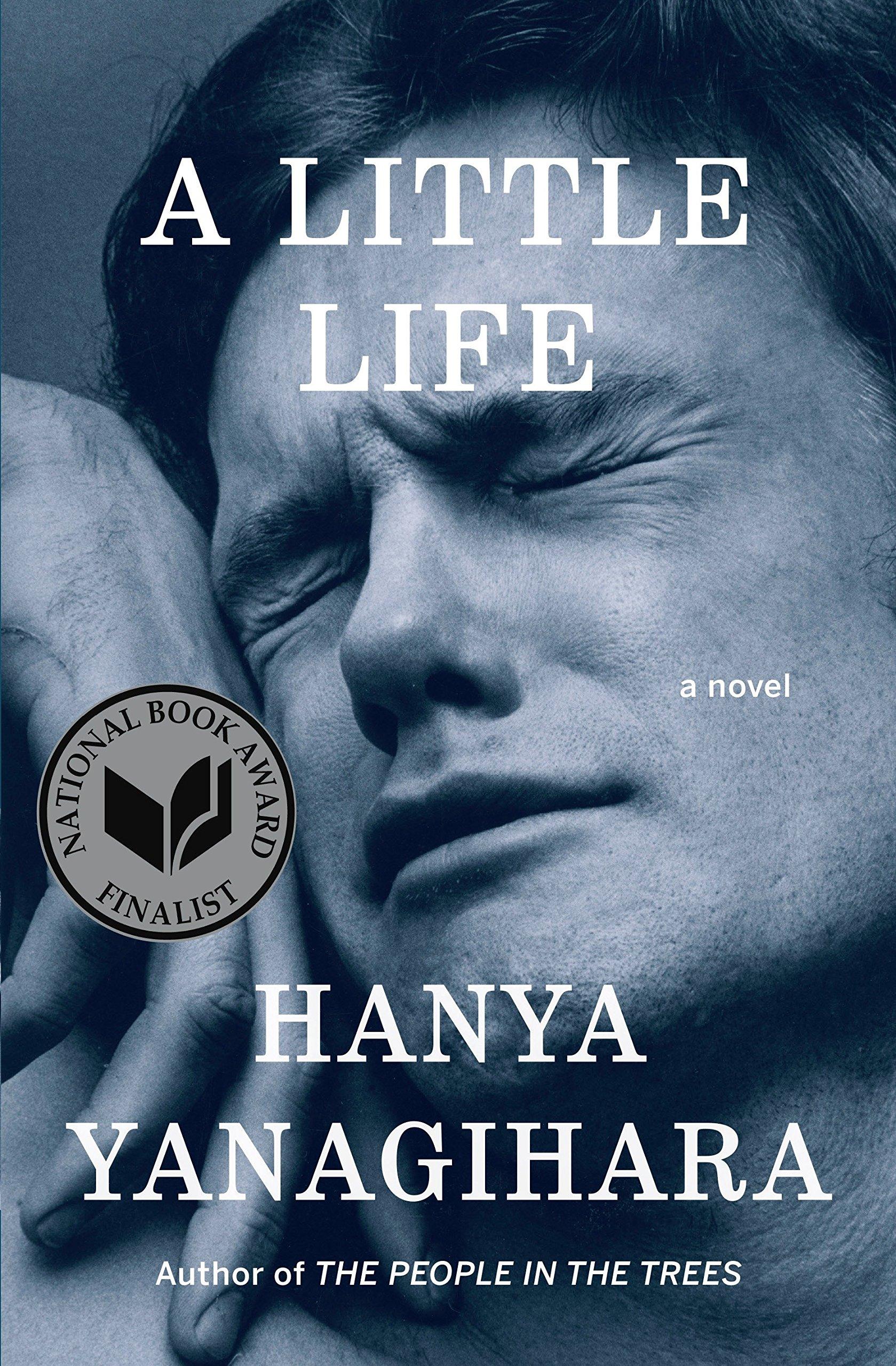 A Little Life: A Novel: Yanagihara, Hanya: 8601423597638: Books ...