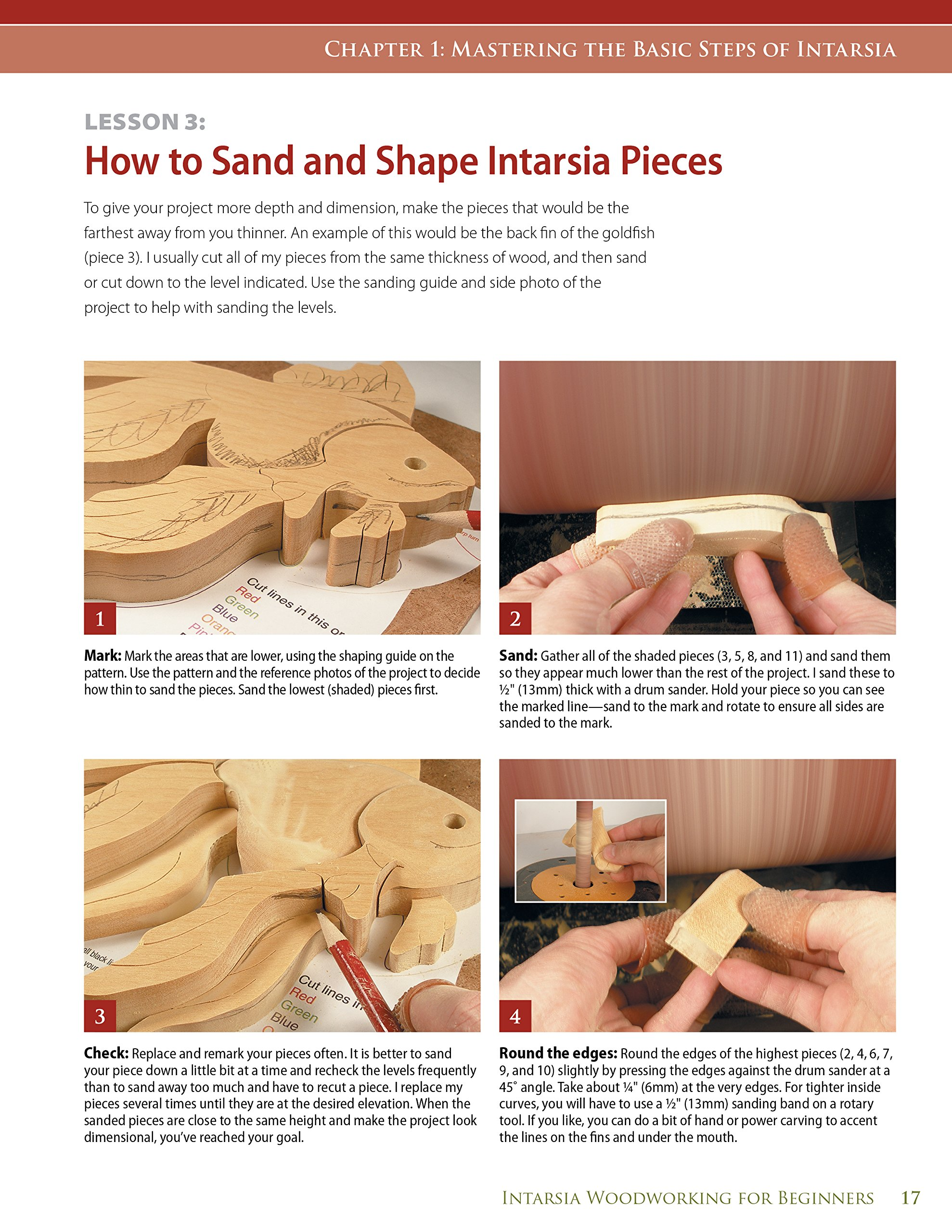 Intarsia Woodworking for Beginners: Skill-Building Lessons for Creating Beautiful Wood Mosaics: 25 Skill-Building Projects: Kathy Wise: 9781565234420: ...