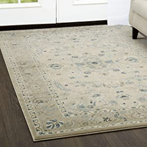 Home Dynamix Shabby Chic Chandler Begonia 172-128 Area Rug 9'2