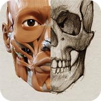 Anatomia 3D para artistas