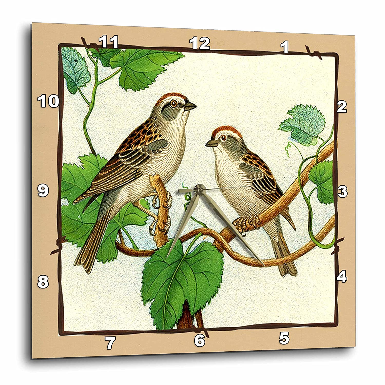 3dRose DPP/_39035/_2 Framed Tan /& Brown Birds in Tree Wall Clock 13 by 13