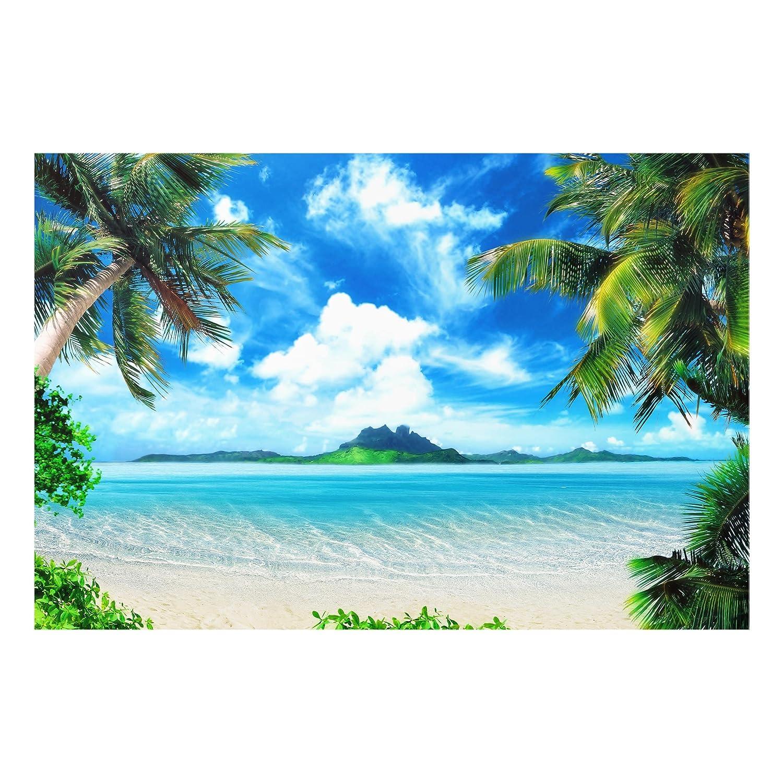 Bilderwelten Glass Splashback - Dream Vacation - Landscape 2:3, Backsplash Cooker Splashback Protector Panel Decorative Splashback Panel, Dimension HxW: 40cm x 60cm PPS. Imaging GmbH