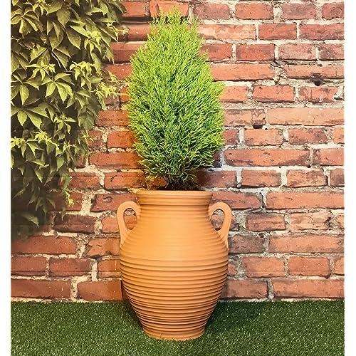 Garden Urns and Planters: Amazon.co.uk on