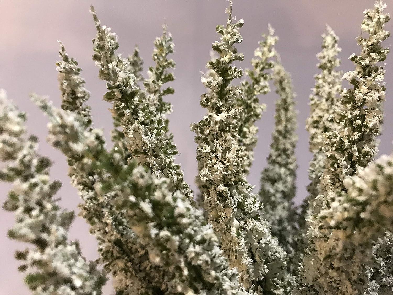 k/ünstliches Heidekraut 28 cm Herbstblume mucplants Kunstblume Erika Calluna Creme auf Steckstab 24 Bl/ütenstiele