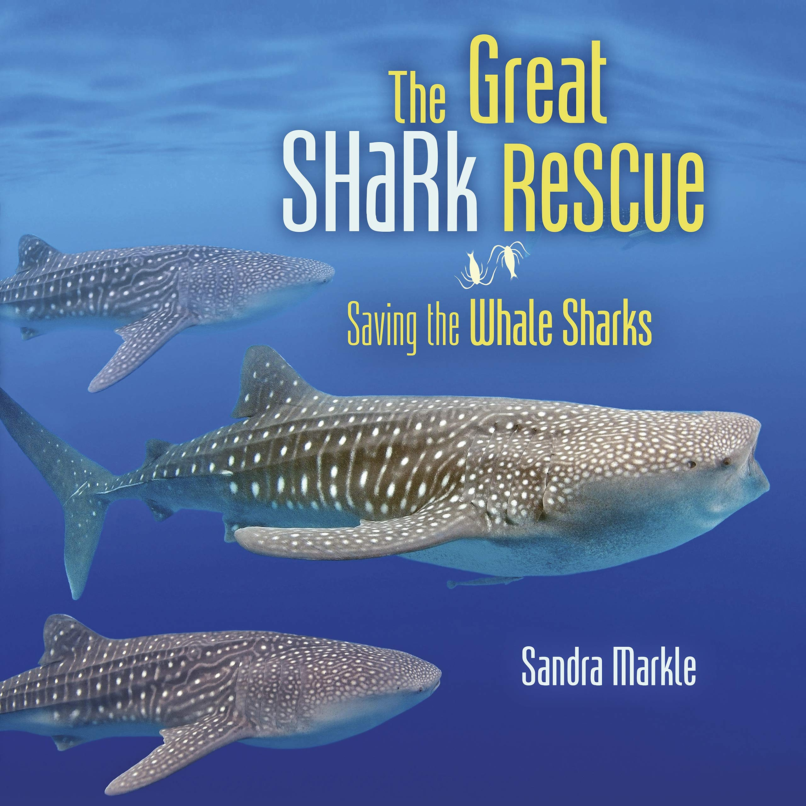 Image result for great shark rescue markle amazon