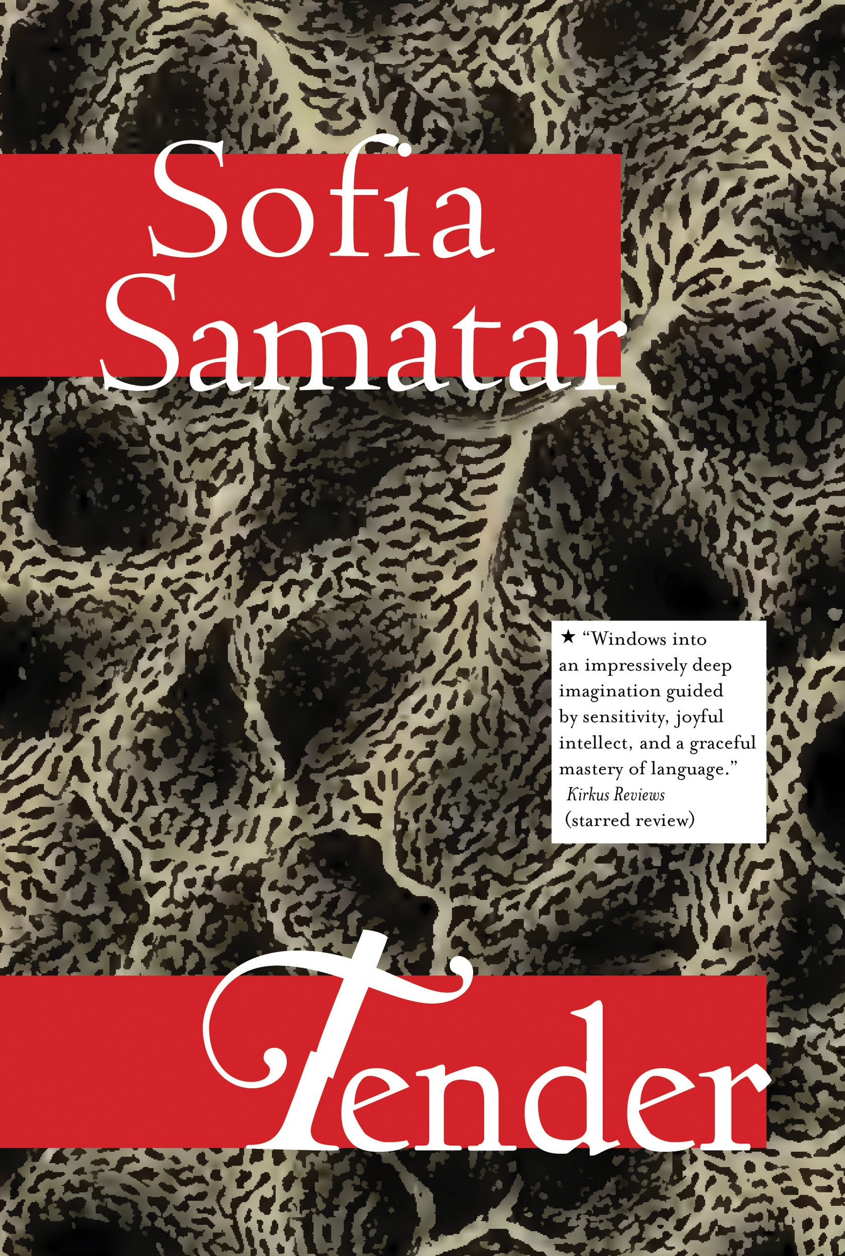 Tender: Stories: Samatar, Sofia: 9781618731265: Amazon.com: Books