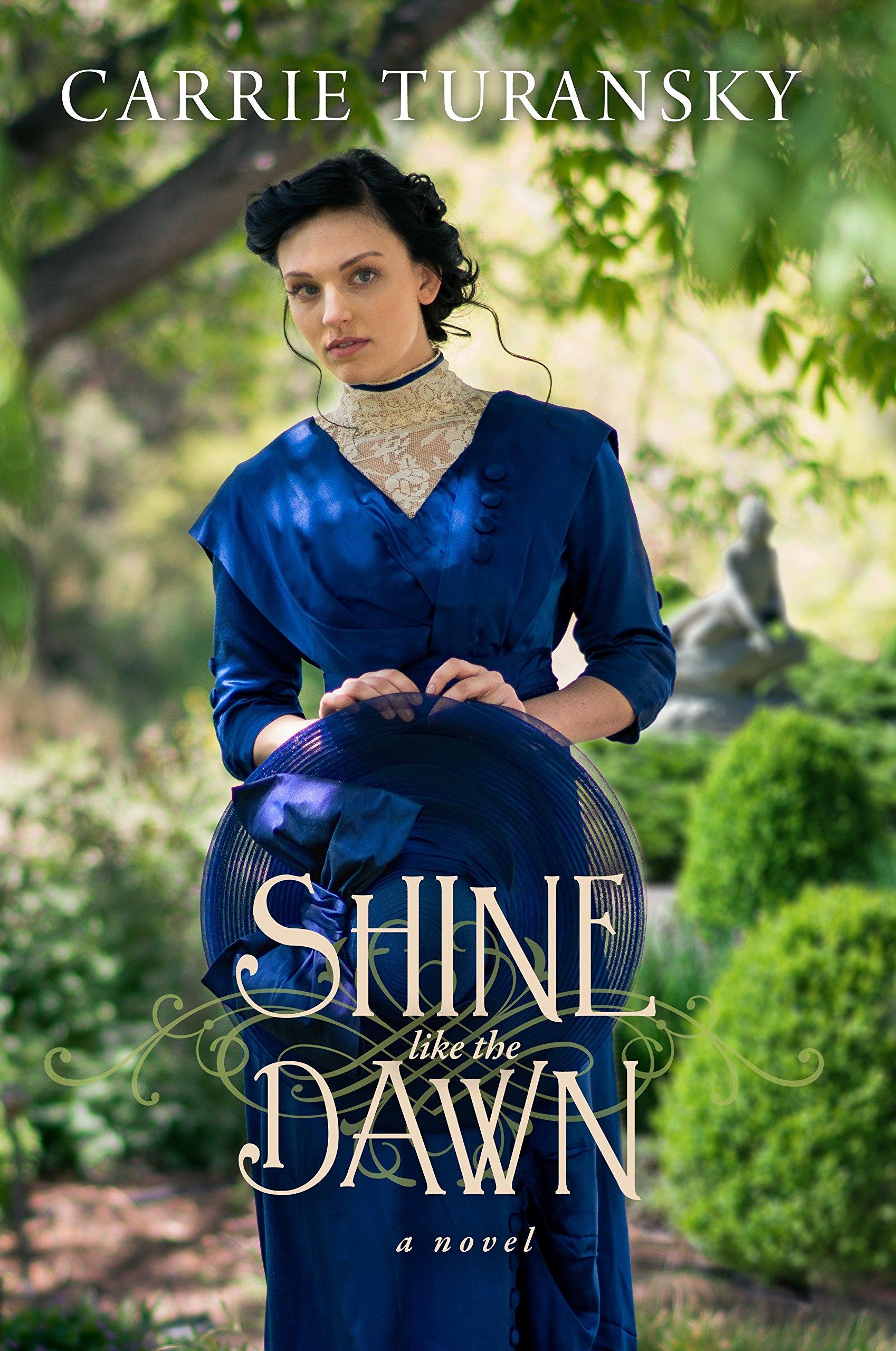 Read Online Shine Like the Dawn: A Novel PDF