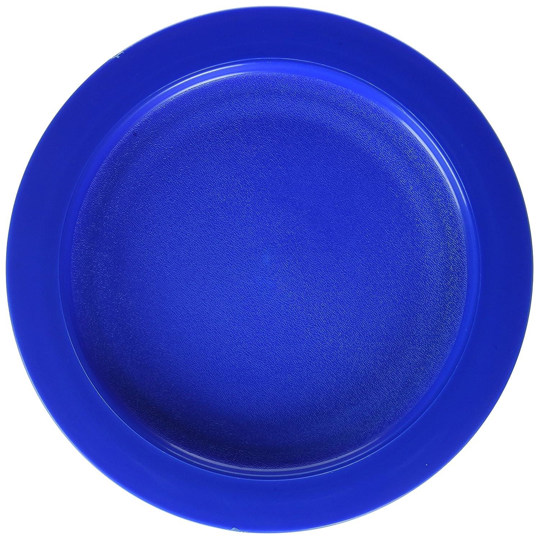 Sammons Preston - 45996 Plate with Inside Edge, 9