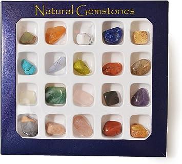 Nueva Caja de Selección de Piedras Preciosas por Tienda de Regalos Fossil: Amazon.es: Juguetes y juegos