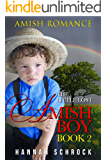 The Little Lost Amish Boy Book 2