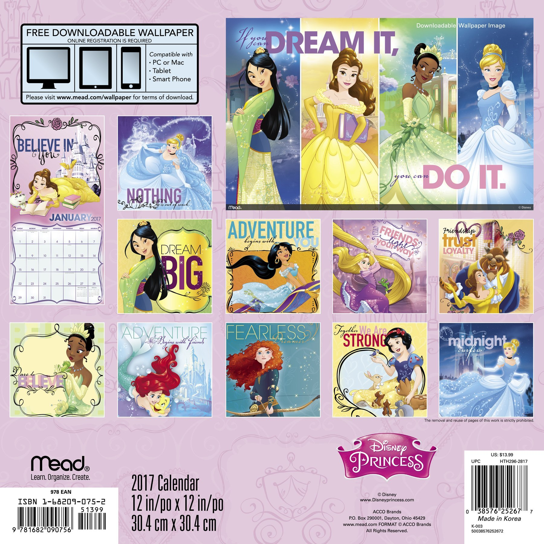 Disney Princess Wall Calendar