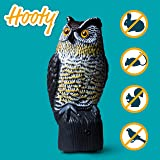 Livin' Well Bird Pest Control Products Scarecrow Owl Decoy w/ Light-Up Owls Eyes & Sounds – Solar-, Motion-Activated Pest Repellent/Deterrent Will Scare Squirrel, Birds & Rodents