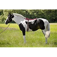 Norton Almohadilla de equitación Bareback, Unisex Adulto, marrón
