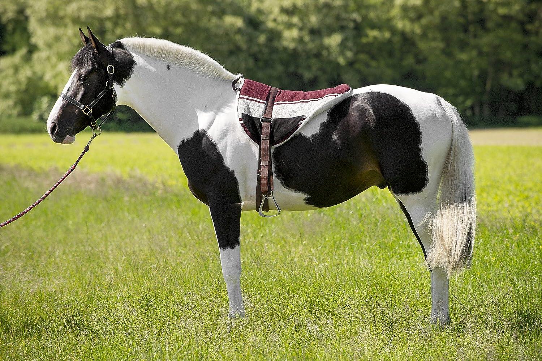 EKKIA Norton - Cuscino da equitazione, colore Marroneee beige