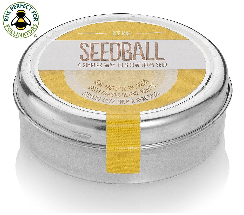 Bee Mix Seed Balls - 1000 Native Bee-Friendly Wildflower Seeds Including Foxglove, Cornflower, Red Clover, Birdsfoot, Wild Marjoram and Viper's-Bugloss. Easy To Use & Grow Seedball SEB01BeM