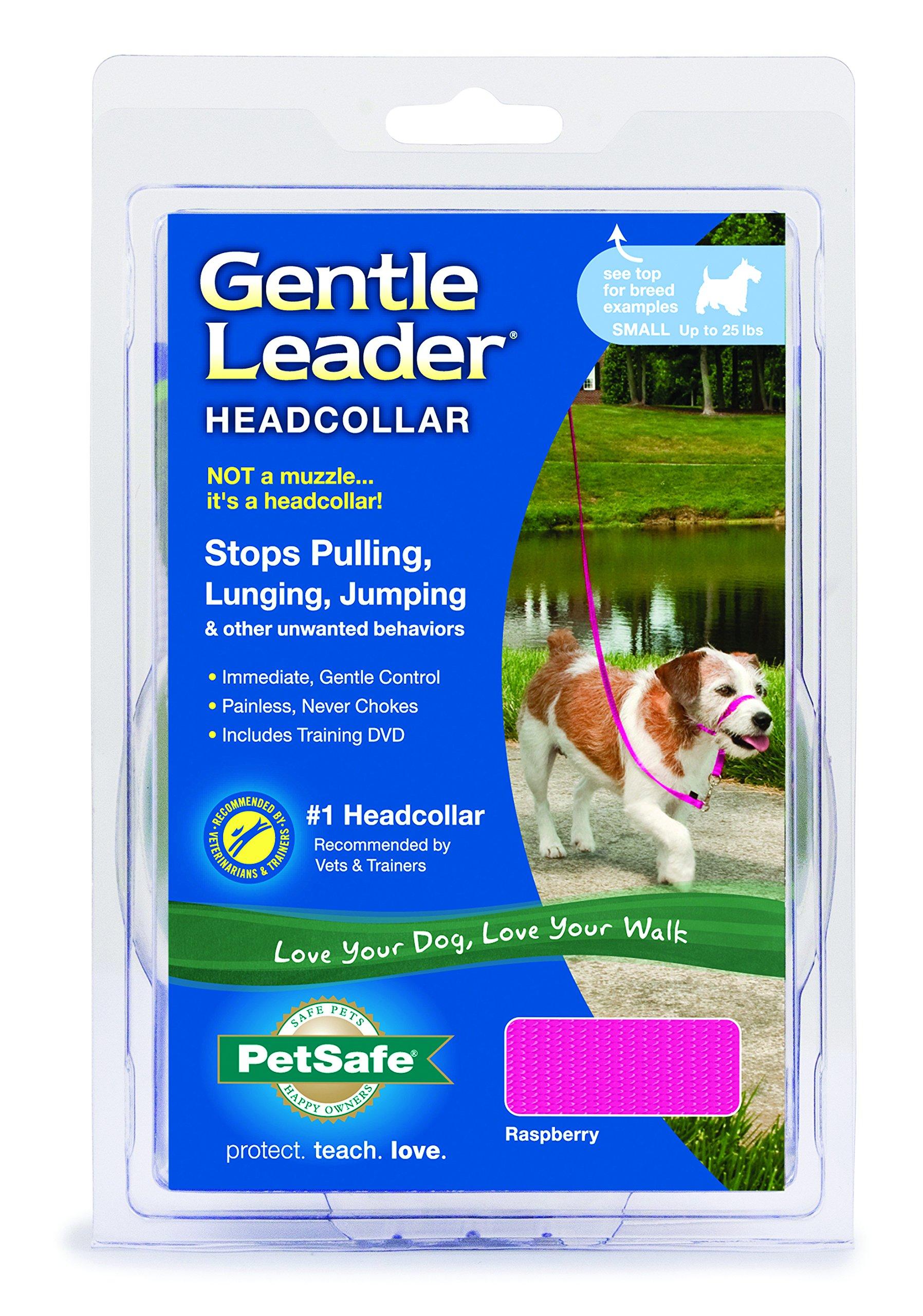 Gentle Leader Quick Release Headcollar: Small, Raspberry Pink