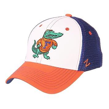 huge discount 8a378 cb8d4 NCAA Florida Gators Mens Threepeatthreepeat Relaxed Cap, White Team Color,  Adjustable, Baseball Caps - Amazon Canada