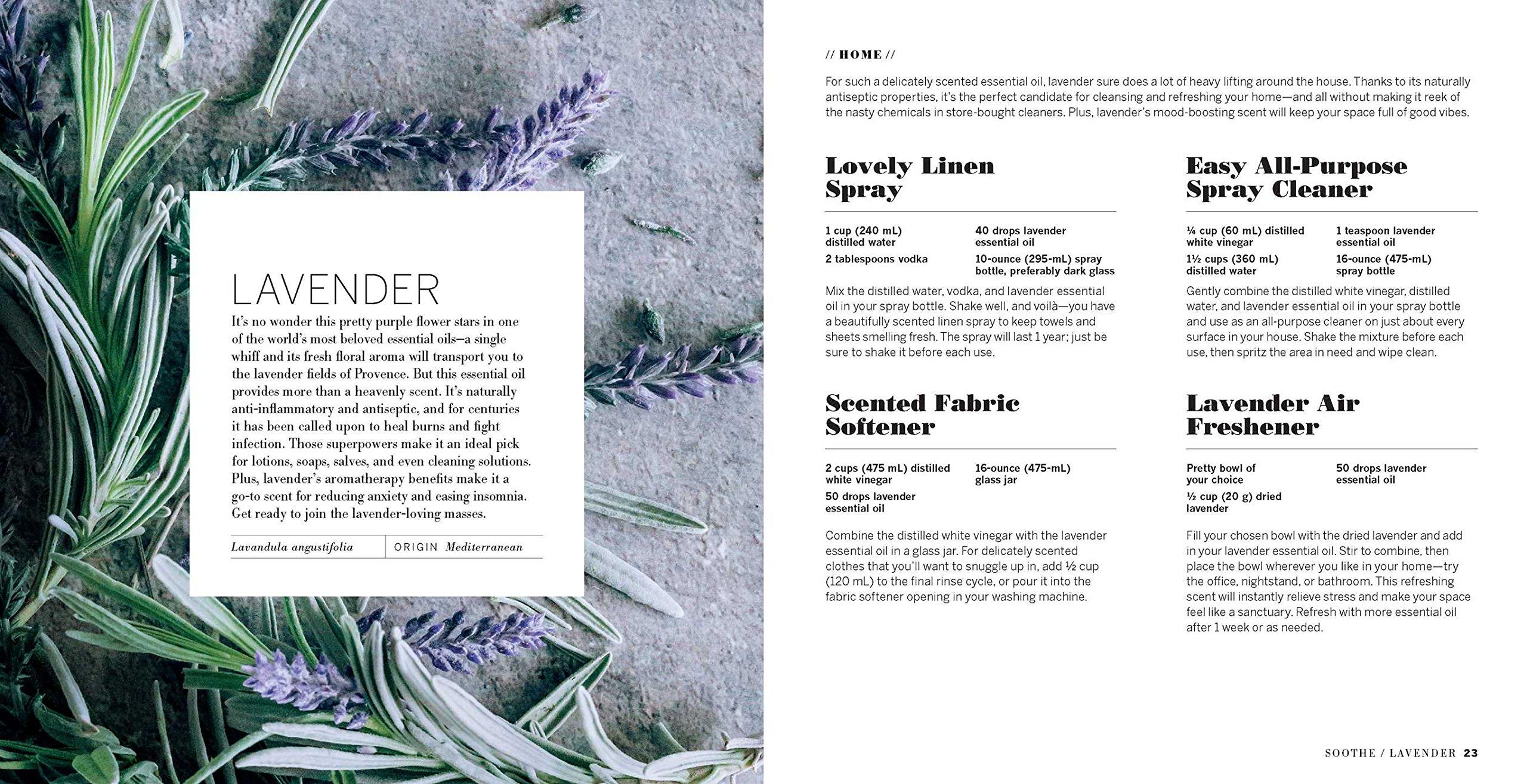287171e10b5 Essential Glow  Recipes   Tips for Using Essential Oils  Stephanie Gerber   9781681882727  Amazon.com  Books