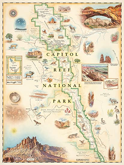 Amazon.com: Capitol Reef National Park Map - Map Art, No ... on yucca house national monument map, roosevelt park north dakota map, little bighorn battlefield national monument map, sequoia national park map, bryce canyon map, lake clark national park and preserve map, valley of fire state park map, kings canyon national park map, dead horse point state park map, hickman bridge capitol reef map, organ pipe cactus national monument map, lake powell map, monument valley map, chaco culture national historical park map, denali national park and preserve map, zion park shuttle map, u.s. capitol map, hawaii volcanoes national park map, canyon de chelly national monument map, canada national parks map,