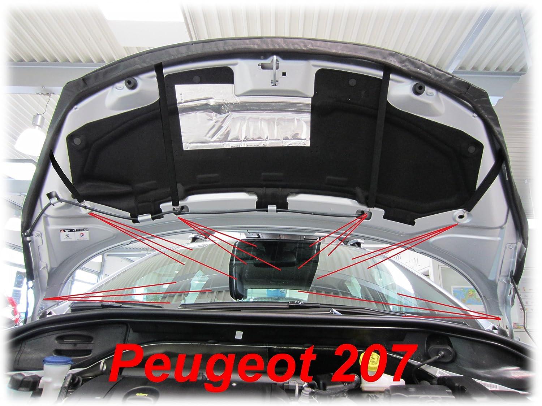 AB-00518 PROTECTOR DEL CAPO 207 2007- Bonnet Bra TUNING