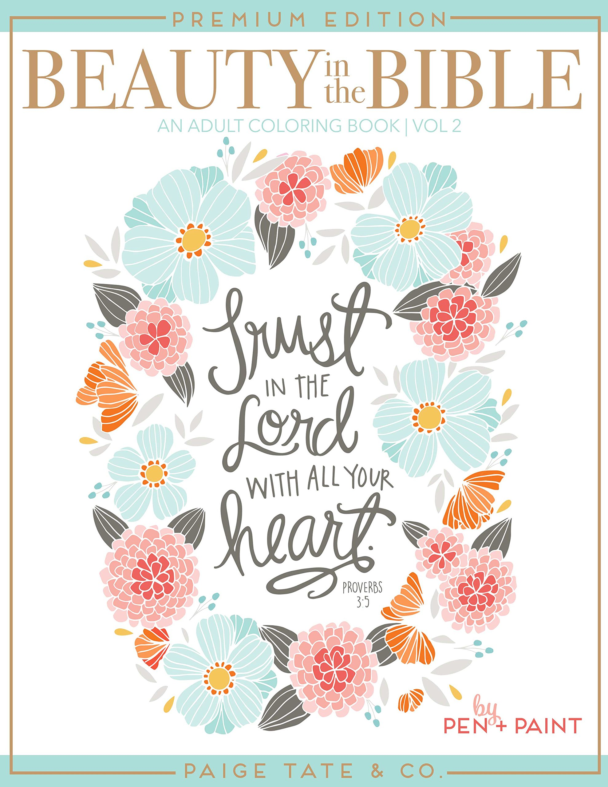 Amazon Beauty In The Bible Adult Coloring Book Volume 2