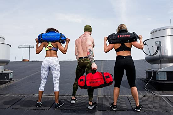 Brute Force Workout Sandbag