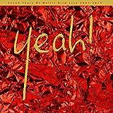 Yeah! Wallis Bird Live 2007-2014 (2LP+MP3) [Vinyl LP] [Vinyl LP]