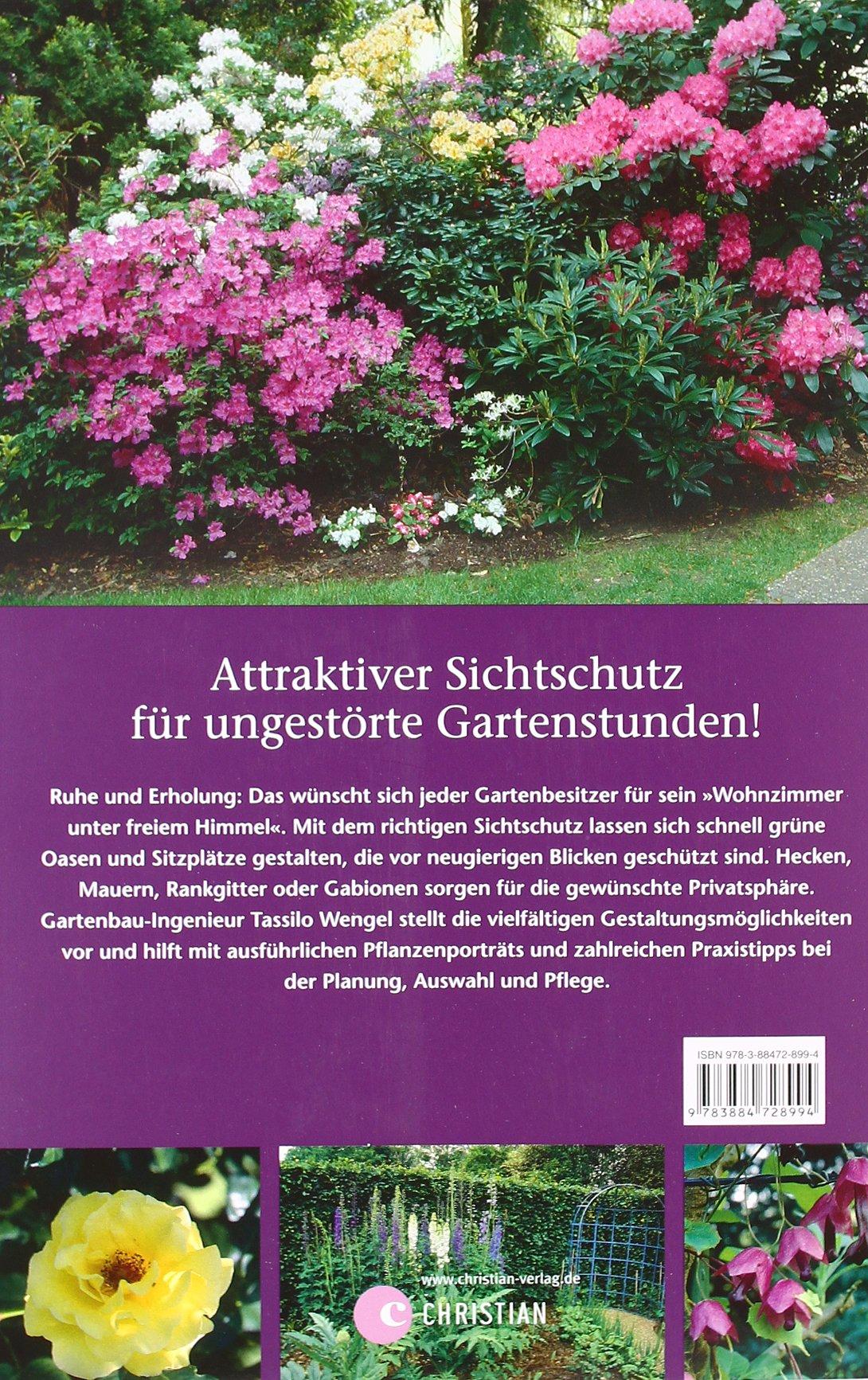Mauer Zaun und Rosenhecke Schöner Sichtschutz für Garten und