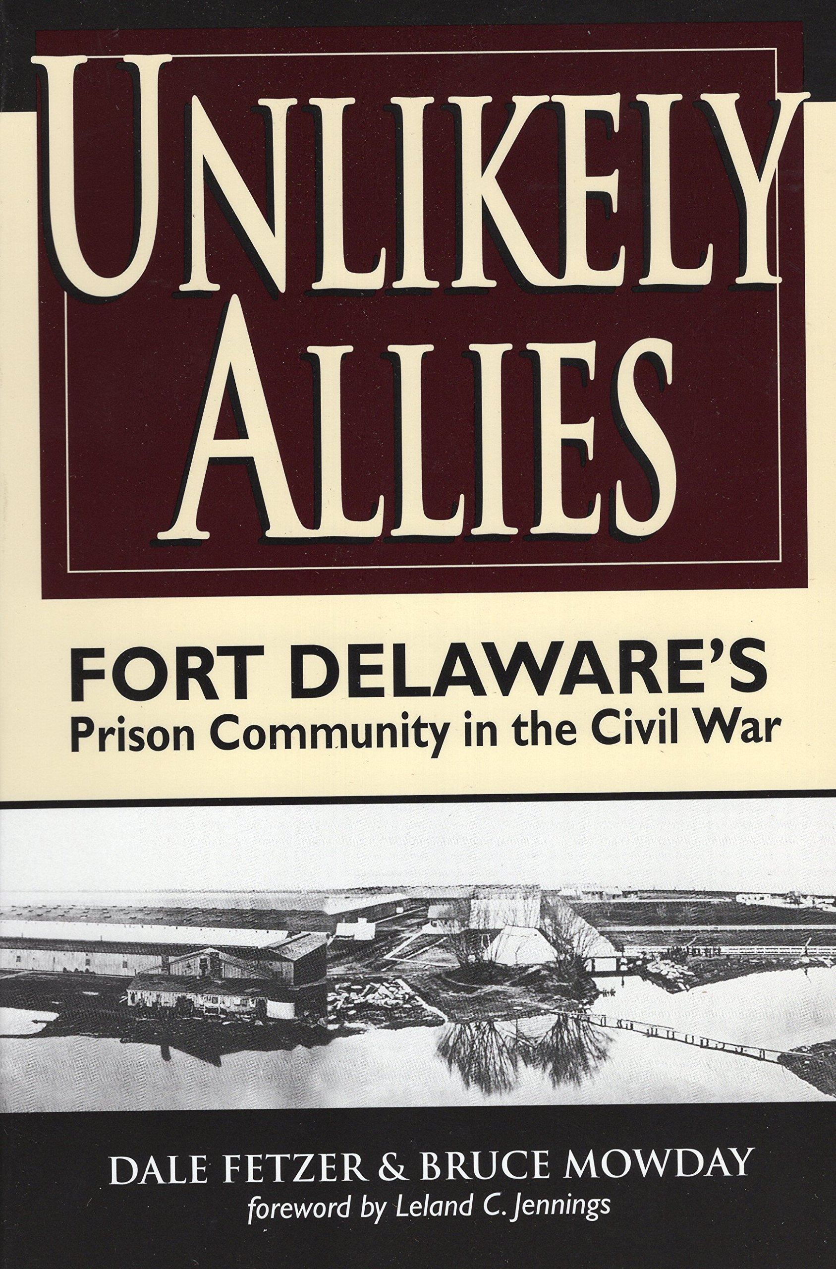 Unlikely Allies: Fort Delaware's Prison Community in the Civil War pdf