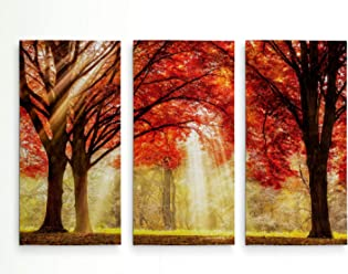 3 Panel Canvas Picture Print Autumn Rivers Coast Orange Trees 3.2