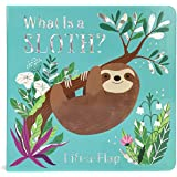 What is a Sloth? (Chunky Lift-a-Flap Board Book)
