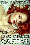 The Orc King's Captive
