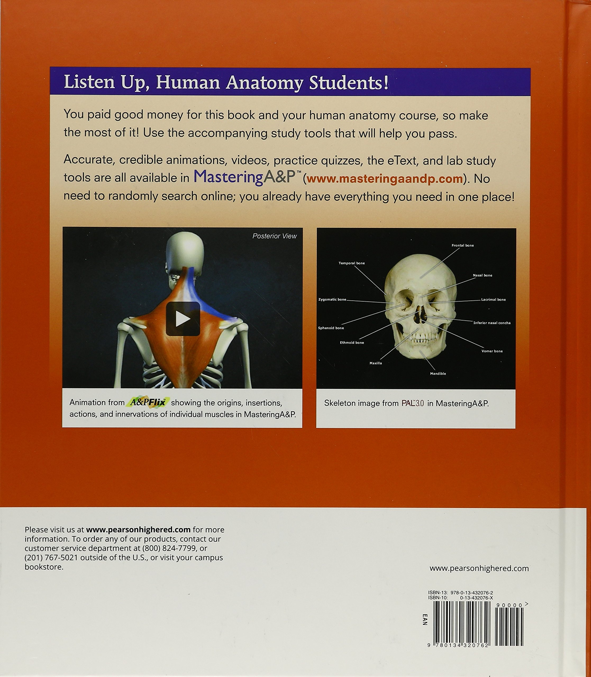 Human Anatomy (9th Edition): Frederic H. Martini, Robert B ...