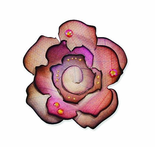 4 opinioni per Sizzix Bigz - Fustella decorativa, motivo: rosa Gulian di Prima Marketing,