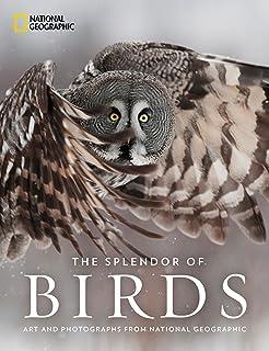 Amazon com: Birds of Paradise: Revealing the World's Most