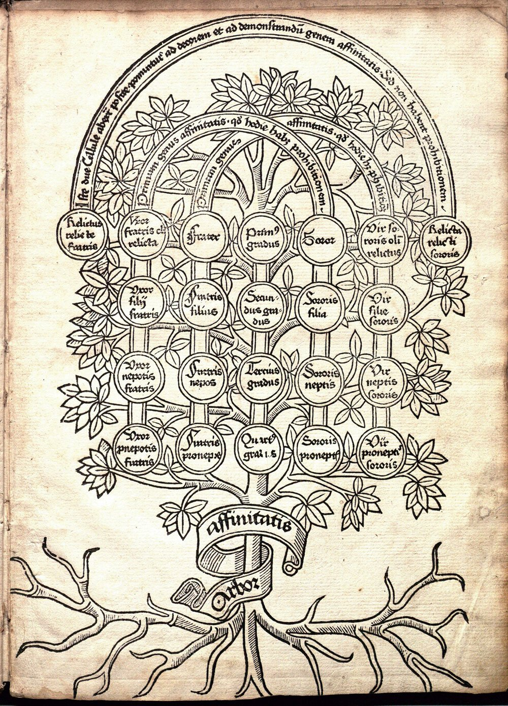 The Book Of Trees Visualizing Branches Of Knowledge Manuel Lima