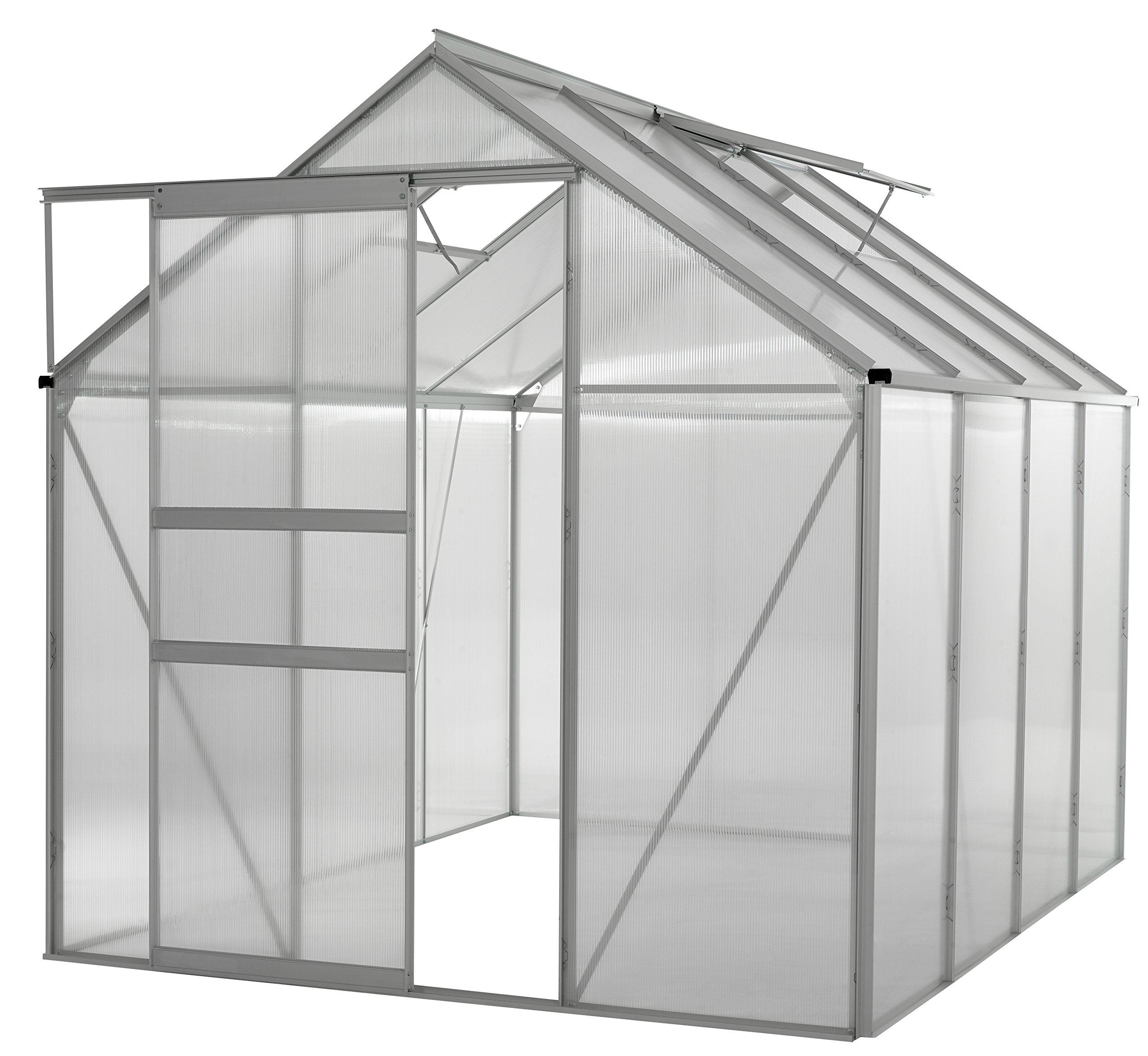Portable Greenhouses for outdoors | 6 X 8 Greenhouse | Sunroom | Large Green House for plants |Aluminum Patio greenhouse plastic panels |Glass Greenhouse kits |Large greenhouses for outdoors by Ogrow by OGrow