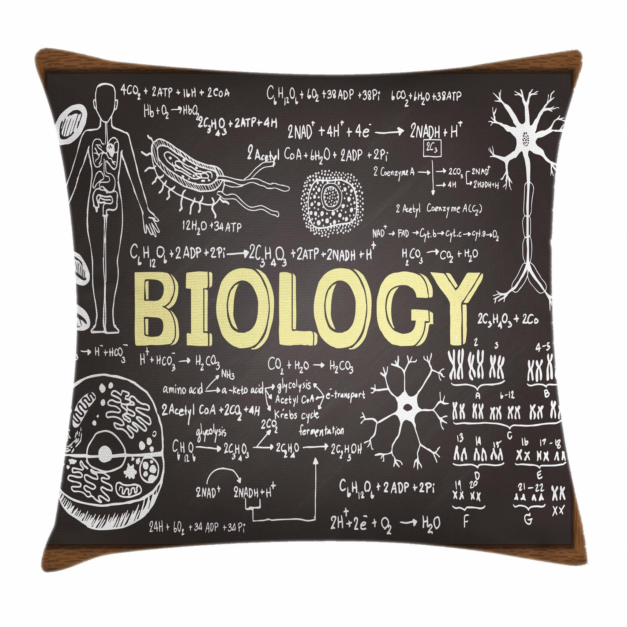 Ambesonne Educational Throw Pillow Cushion Cover, Black Chalkboard Biology Hand Written Symbols School Classroom, Decorative Square Accent Pillow Case, 20 X 20 Inches, Black Brown Pale Yellow