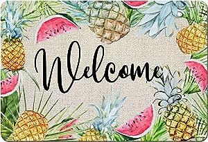Pineapple Watermelon Entrance Rug, 15.7 x 23.6 Inch Welcome Summer Doormat Rubber Non-Slip Reusable Hawaiian Floor Mat Summer Fruit Holiday Low Profile Mat for Indoor Outdoor