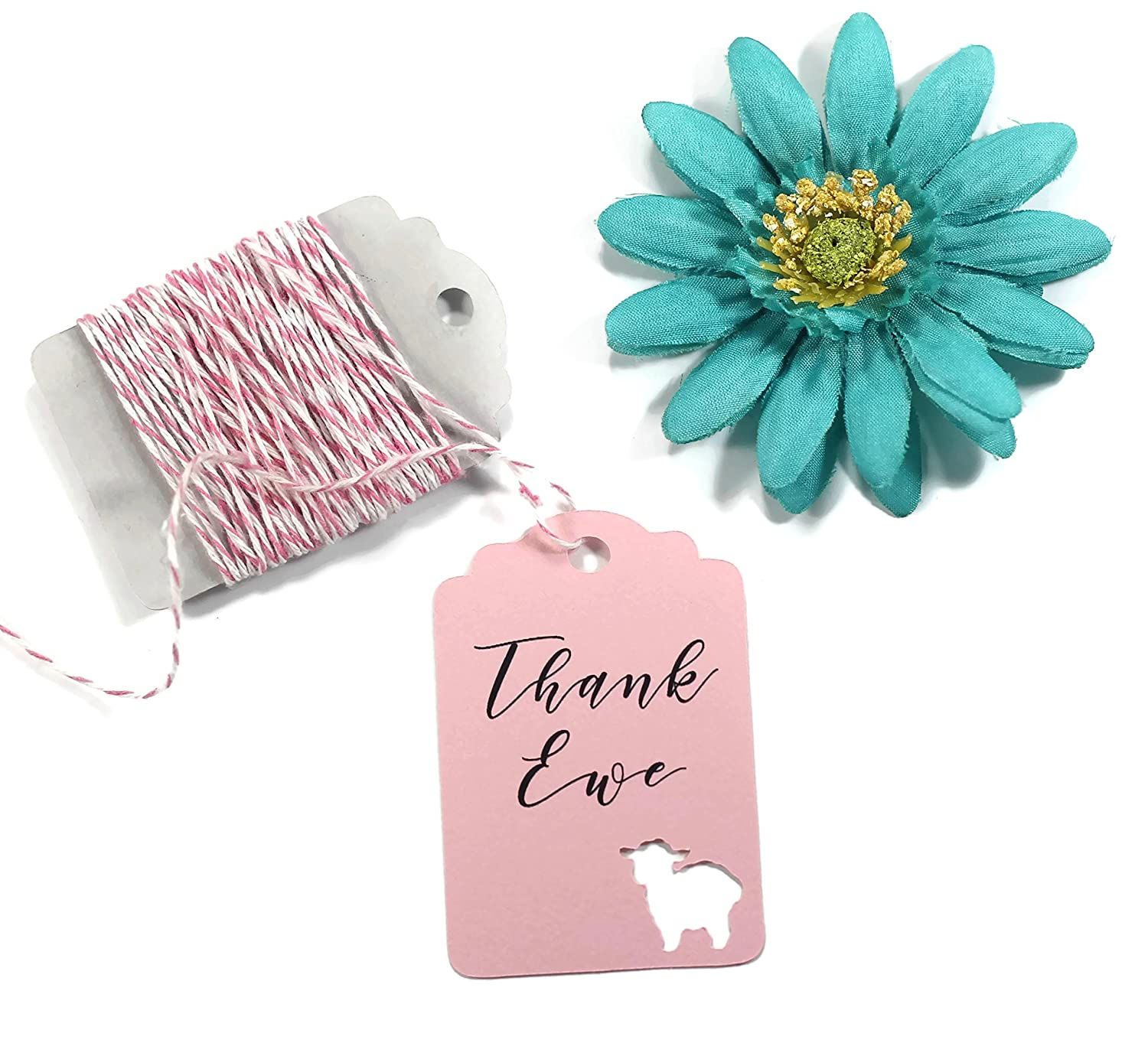 Amazon.com: Thank Ewe Baby Shower Gift Tags - Baby Pink Lamb Themed ...