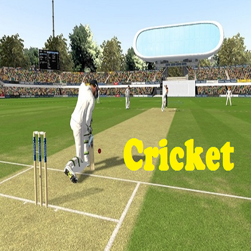 cricket board game india - 2