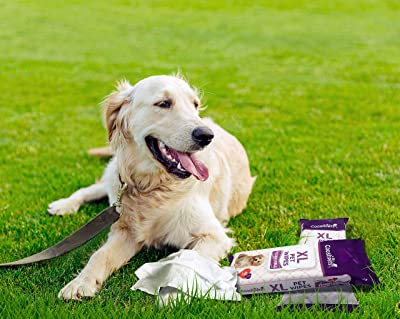 Use Pet-Specific Wipes