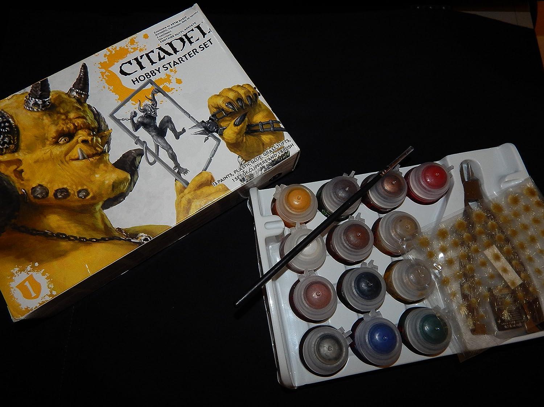 Pincel de iniciación de Citadel Citadel Starter Brush