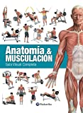 ANATOMÍA & MUSCULACIÓN: Guía visual completa (Deportes nº 27)