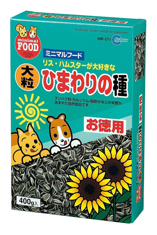 Marcantonio fresh large sunflower seeds (400g) MR-571
